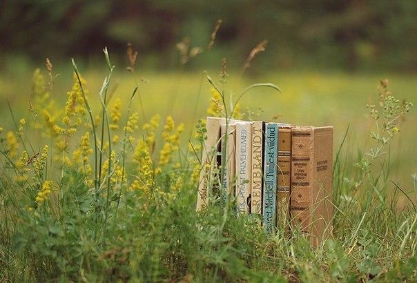 книги в траве
